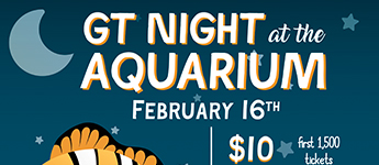 Flyer from Georgia Tech Night at the Aquarium